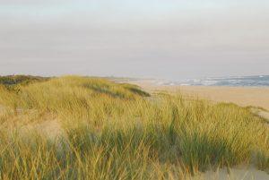 90mile beach escape to Gippsland