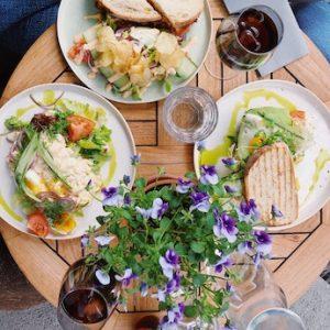 East Gippsland Food & Wine Tours - square