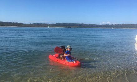 Kayak and SUP in Metung