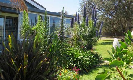 Lakes Waterfront Motel Accommodation Lakes Entrance