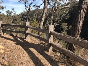 The unique post and rail fences were hand hewn from local timber by talented DELWP craftsmen from Briagolong using traditional tools and techniques. Photo: Peter McHugh – July 2019.